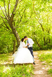 Beautiful bride and groom standing in grass and kissing. Wedding couple Royalty Free Stock Images