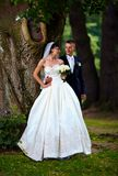 Beautiful bride and groom in summer park Royalty Free Stock Photos