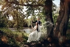 Wedding couple. Beautiful bride and groom. stock photos