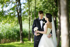 Beautiful bride and groom Stock Photos