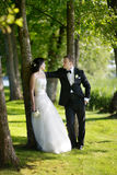 Beautiful bride and groom. By a tree Stock Image
