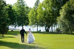 Beautiful bride and groom Stock Photos