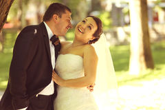 Beautiful bride and groom Stock Images
