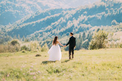 Beautiful bride and groom walking back holding hands on meadow Stock Photography