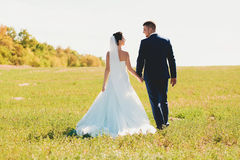 Beautiful bride and groom walking on field in sunlight Stock Images