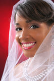 Beautiful Bride Headshot on Red Background Royalty Free Stock Image