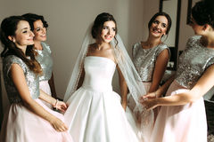 Beautiful bride and her beautiful bridesmaids stock photo