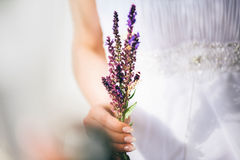 Beautiful bride holding field flowers Stock Photography