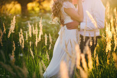 Beautiful Bride hugs groom on nature in the sunset light, wedding, marriage, relationship, lifestyle Royalty Free Stock Image