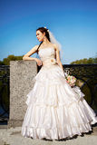 Beautiful Bride In A Wedding Dress Royalty Free Stock Photography
