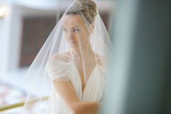 The beautiful bride Stock Photos