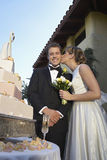 Beautiful Bride Kissing Her Groom Stock Images