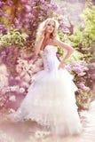 Beautiful bride. In a lavender garden Stock Photos