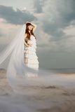 Beautiful bride with a long veil on the beach at sunset. Beautiful bride in a long dress with a long veil on the beach at sunset Royalty Free Stock Images