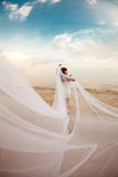 Beautiful bride with a long veil on the beach at sunset. Beautiful bride in a short dress with a long veil on the beach at sunset Royalty Free Stock Images