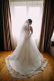 Beautiful bride with long veil standing against window lights.  Stock Image