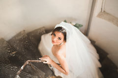 Beautiful bride in magnificent dress stands alone on stairs Stock Image