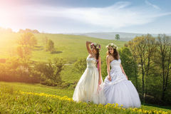 2 beautiful bride on a meadow in the early morning Stock Photography