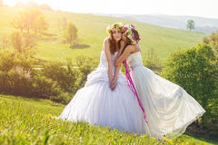 2 beautiful bride in the morning , the idyllic meadow , friendship symbol Royalty Free Stock Photography