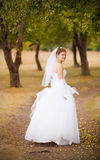 Beautiful bride on the nature Stock Images