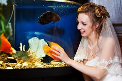 Beautiful bride near big aquarium Royalty Free Stock Photo