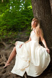 Beautiful bride near the tree Stock Photos