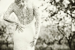 Beautiful bride outdoor in the park, back view Stock Photo