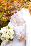 Beautiful bride in the park Stock Images