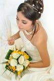 Beautiful bride portrait Stock Photos