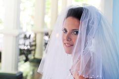 Beautiful bride portrait Stock Photography