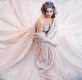 Beautiful bride portrait Royalty Free Stock Images