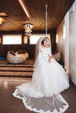 Beautiful Bride Portrait wedding makeup, hairstyle Royalty Free Stock Photography