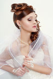 Beautiful bride portraite Royalty Free Stock Photography