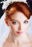 Beautiful bride portraite Stock Photos