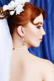 Beautiful bride portraite Royalty Free Stock Image