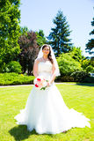 Beautiful Bride Portraits Outdoors Royalty Free Stock Photos