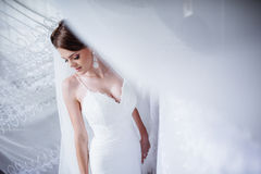 Beautiful bride posing in daylight Stock Photos