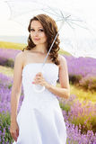 Beautiful bride posing at field of lavender Royalty Free Stock Images