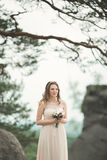 Beautiful bride posing near rocks against background the mountains Stock Image