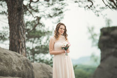 Beautiful bride posing near rocks against background the mountains Royalty Free Stock Photos