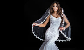 Beautiful bride posing in studio. Royalty Free Stock Photo