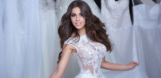 Beautiful bride posing. Royalty Free Stock Images