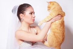 Beautiful bride with red cat. Beautiful bride holding a big red cat Royalty Free Stock Image