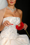 Beautiful bride with a red flower royalty free stock images
