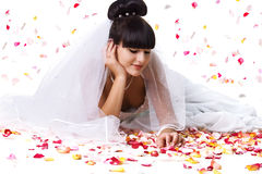 Beautiful bride and rose petals. Beautiful bride in a white dress with rose petals. Studio shot Royalty Free Stock Images