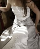 Beautiful bride silver dress Stock Photos