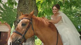 A beautiful bride is sitting on a horse outdoors. The bride joyfully strokes the horse with her hand. Moments of a stock footage
