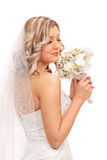 Beautiful bride smelling wedding bouquet Royalty Free Stock Images