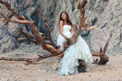 Beautiful bride. Standing on branches Stock Photos