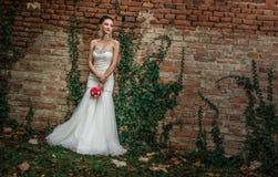 Beautiful bride standing or posing Royalty Free Stock Image